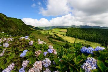 Paisagem típica dos Açores