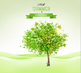 Summer background with a green tree. Vector.
