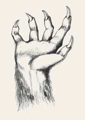 Sketch illustration of werewolf hand