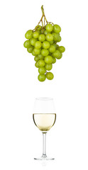 Green grapes and a glass of white wine