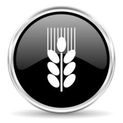 grain internet icon