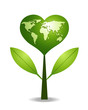 Green heart tree .Earth Map.Save the earth.