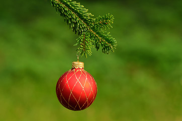 Red ornament christmas ball