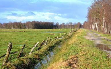 Moor Feuchtgebietgebiet in Niedersachsen bei Diepholz