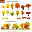 Autumn greenwood. Set 4. (Autumn deciduous forest.)