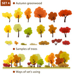 Autumn greenwood. Set 4. (Autumn deciduous forest.)