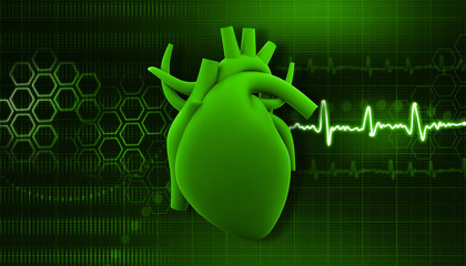 Human heart on science  background .