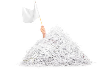 Hand waving white flag from pile of shredded paper