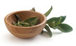Tea branch and bowl with tea leaves