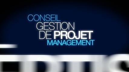 Conseil Gestion de Projet management nuage de mots texte