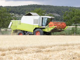 Maquina cosechadora en un campo de trigo