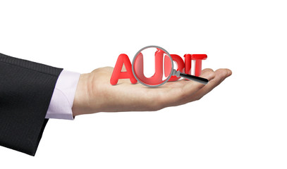 audit businessman