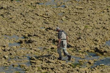 pêcheurs à pieds