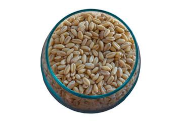 Germinated brown rice or GABA-rice, medicinal properties.