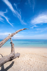 Timber on the beach and blue sky at Koh Rok, Krabi, Thailand