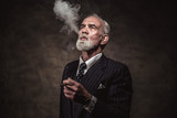 Cigar smoking characteristic senior business man with gray hair