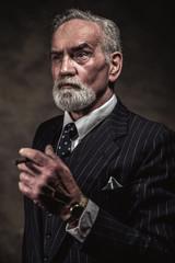 Cigar smoking characteristic senior business man with gray hair