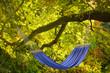 canvas print picture - Hängematte am Baum im Herbst
