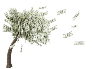 tree money