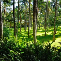 Sunny palm grove with green lawn and bush.