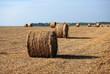 Meules de foin en perspective dans un champ