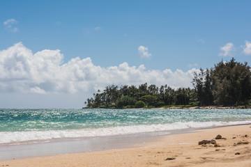 the beach in Maui
