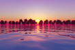 pink tropical sunset