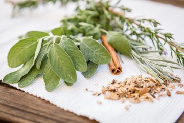 composition de plantes aromatiques