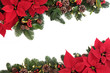 canvas print picture - Christmas Floral Border