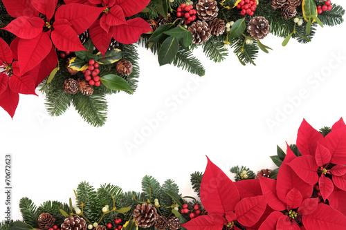 canvas print picture Christmas Floral Border
