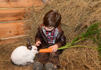 little boy feeding rabbit carrot