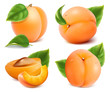 Apricots with green leaves