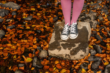 standing on rock surrounded by autumn leaves