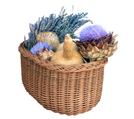 Basket with pumpkins, artichoke and lavender on white background