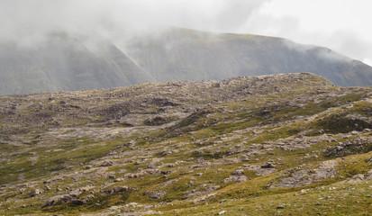 Barren Highlands