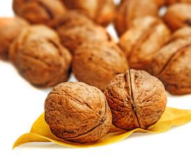walnuts on white background