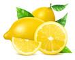 Fresh lemons with leaves.