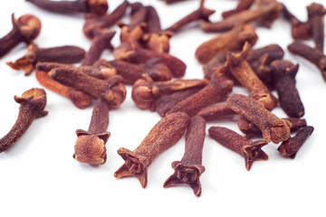 cloves against white background