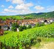 Ribeauvillé , Alsace (Fr).