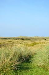 Naturlandschaft an der Nordsee