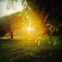The Last Light Of Evening