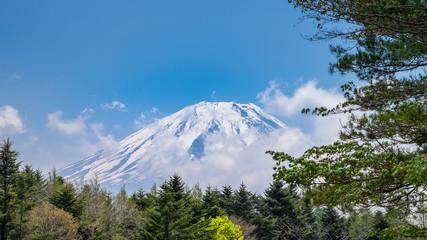 Mt Fuji, Japan #Close Up 2