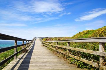 Picturesque landscape with bridge. Spain