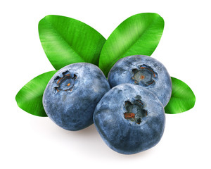 Blueberries with leafs