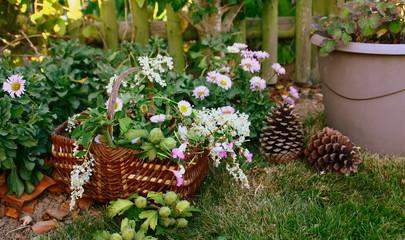 panier ,cueillette de fleurs sauvages ,en campagne
