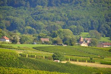 Montigny-les-Arsures (Percée du vin jaune 2015)