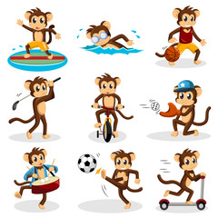 Monkey doing activity