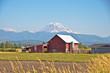 Red Barn and Rainier - 70685065