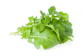 The Bunch of Salad Rocket
