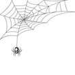 Spider web wallpaper - 70686842